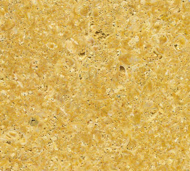 Marmol amarillo fosil