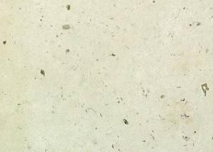 Marmol beige fosil